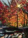 Harlem Meer Canopy (thumbnail)