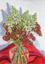 Star of Bethlehem with Yarrow and Tissue Paper (thumbnail)