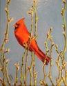 Cardinal (thumbnail)