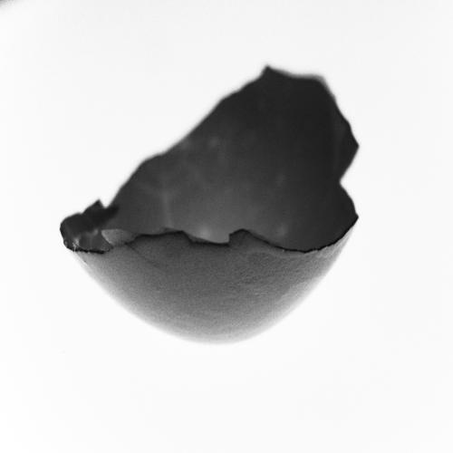 Egg Shell #2 - February 2013