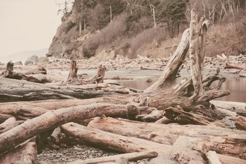 Ruby Beach #9
