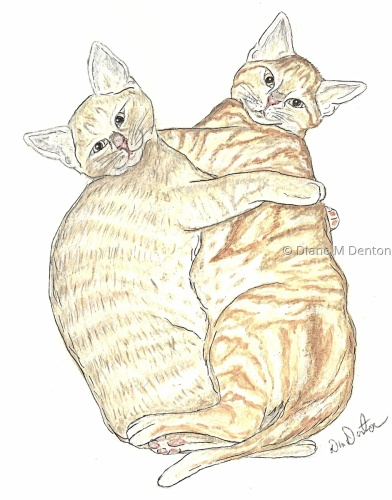 Kittens Yoshi and Kenji by DM Denton Author and Artist