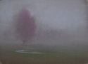 900 In the Mist (thumbnail)