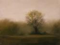 2180 Meadow Mist 2 (thumbnail)