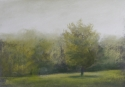 2298 Meadow Mist 7 (thumbnail)