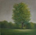 2617 Meadow Mist 8 (thumbnail)