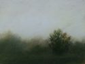 2741 Mist Over the Meadow (thumbnail)