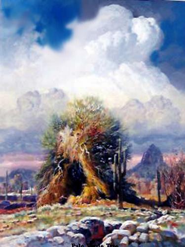 """ Old Palo Verde Tree """