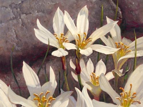 Lynne's Flowers