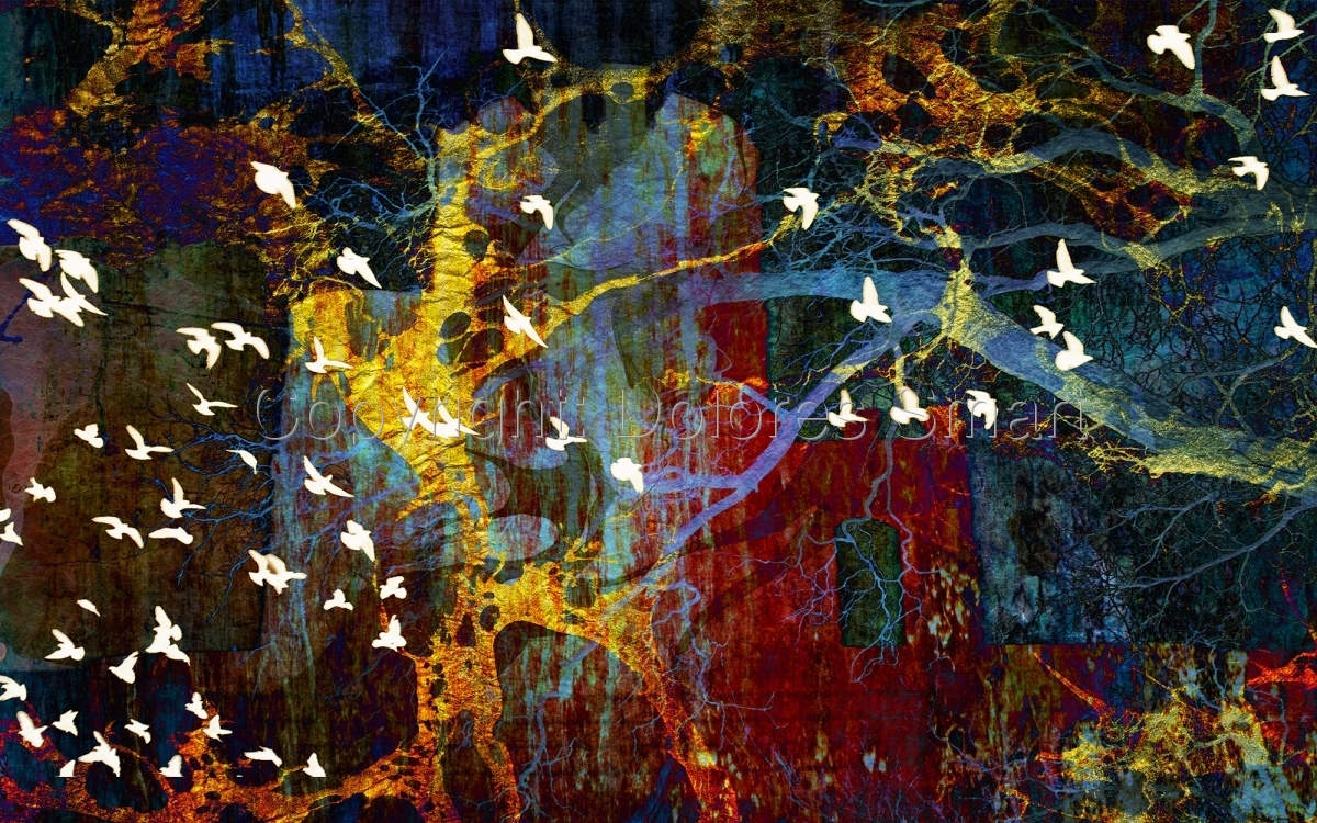 Abstract and Birds (large view)