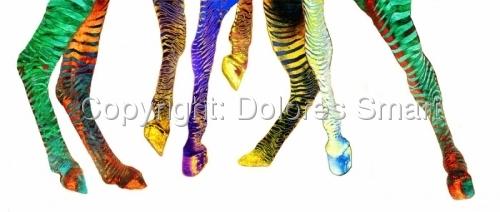 Zebra Rockettes by Dolores Smart