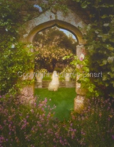 Evening, Secret Garden