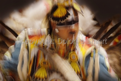 Dancer, Pow Wow