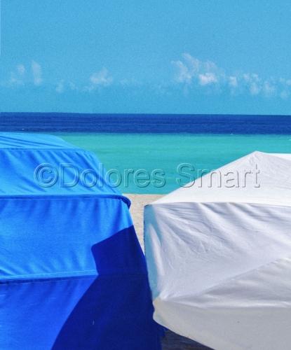 Miami Beach Blues