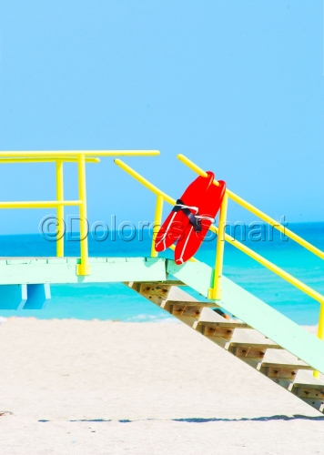 Still Life, Miami Beach