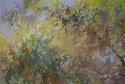 Treetop Symphony (thumbnail)