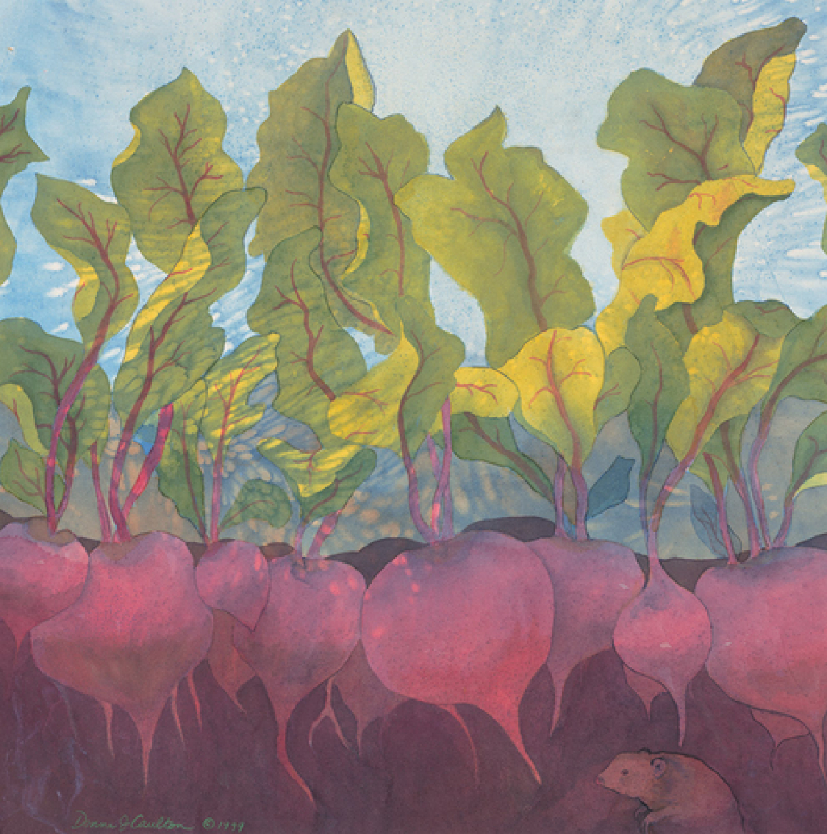 """Beets"" (large view)"