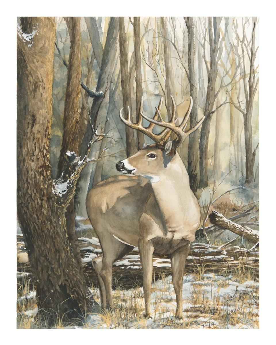 """U P"" Buck (large view)"