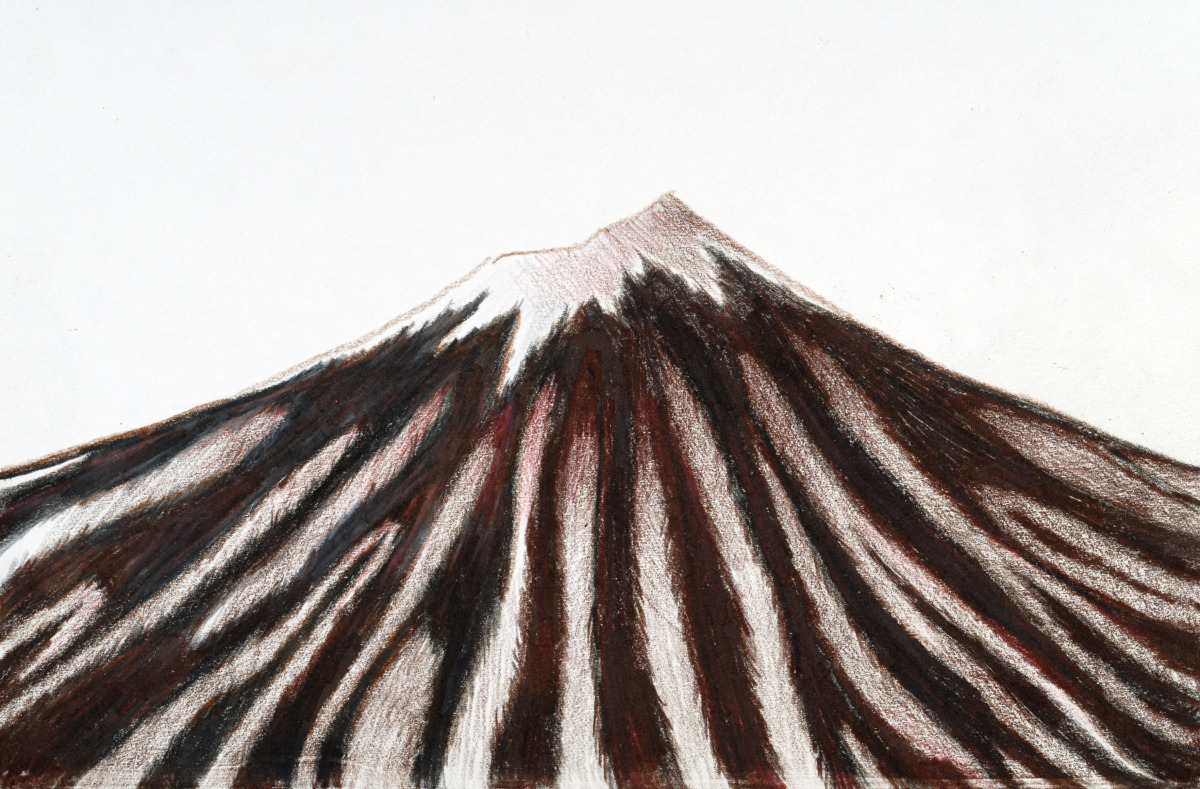 Zebra Fuji (large view)