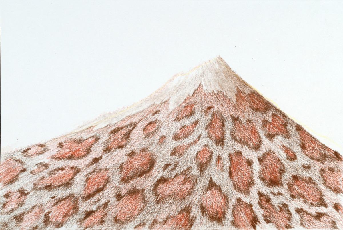 Leopard Skin Fuji (large view)