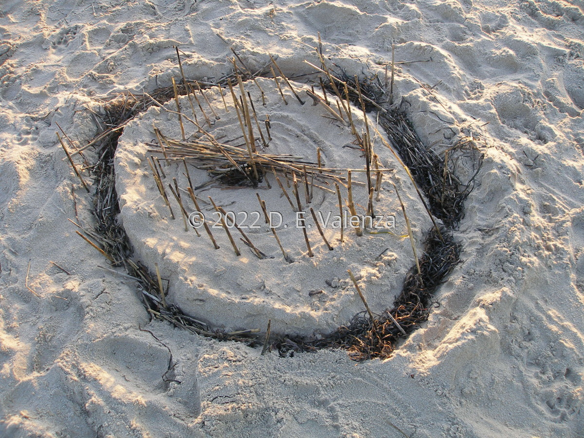 Meditation Circle (large view)