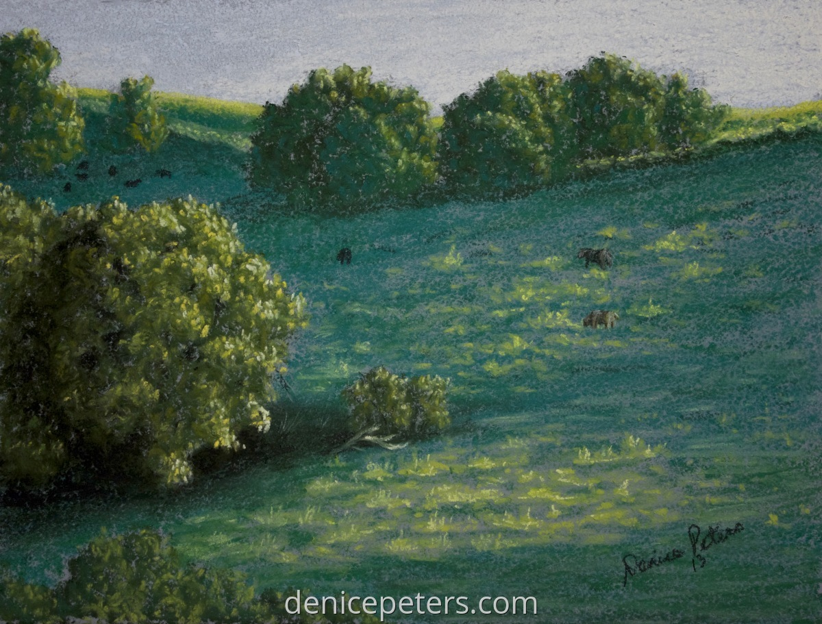 Evening Pasture (large view)