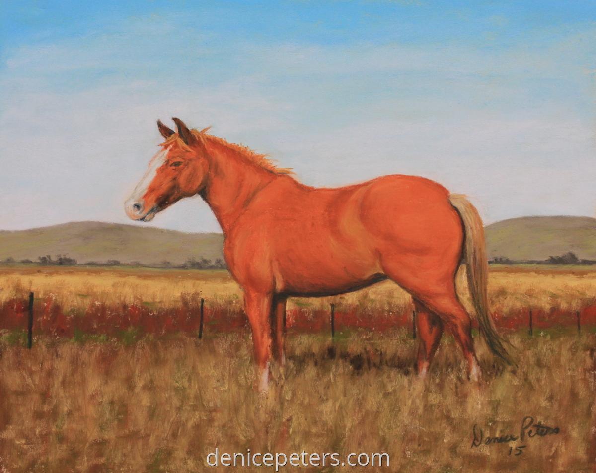 Yellow Wolf - Dakota Horse Conservancy (large view)