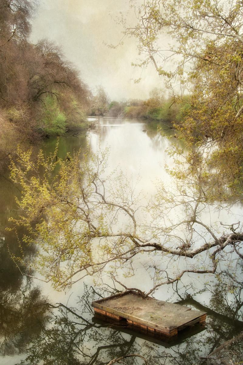 Stillness (large view)