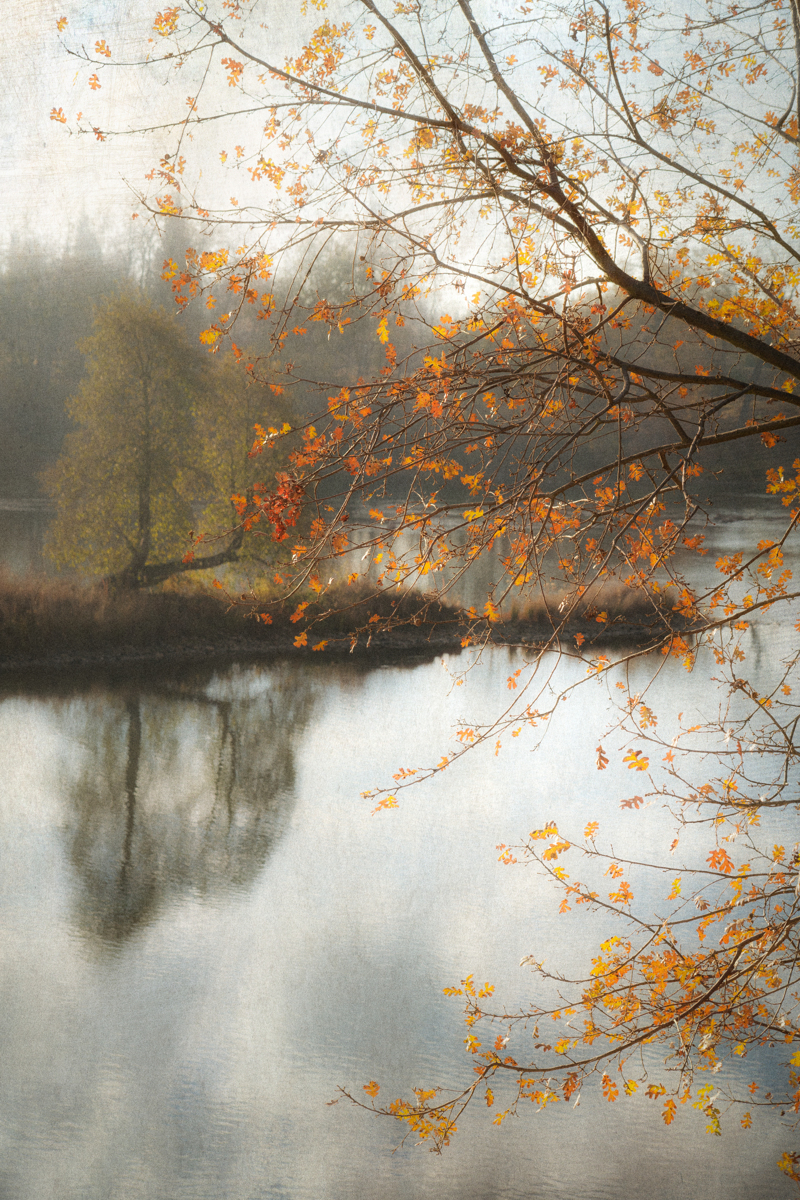 River Morning (large view)