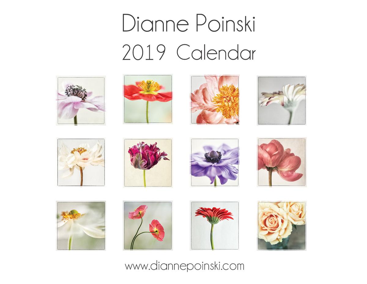2019 Calendar  (large view)