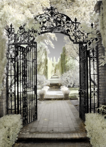 Filoli Gate by Dianne Poinski