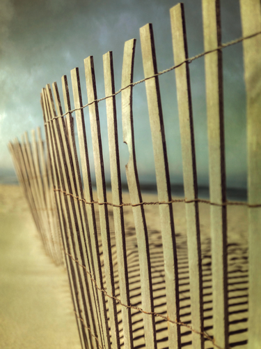 Beach Fence II by Dianne Poinski