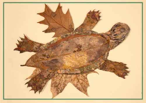 Land Turtle by Dorothy Prescott