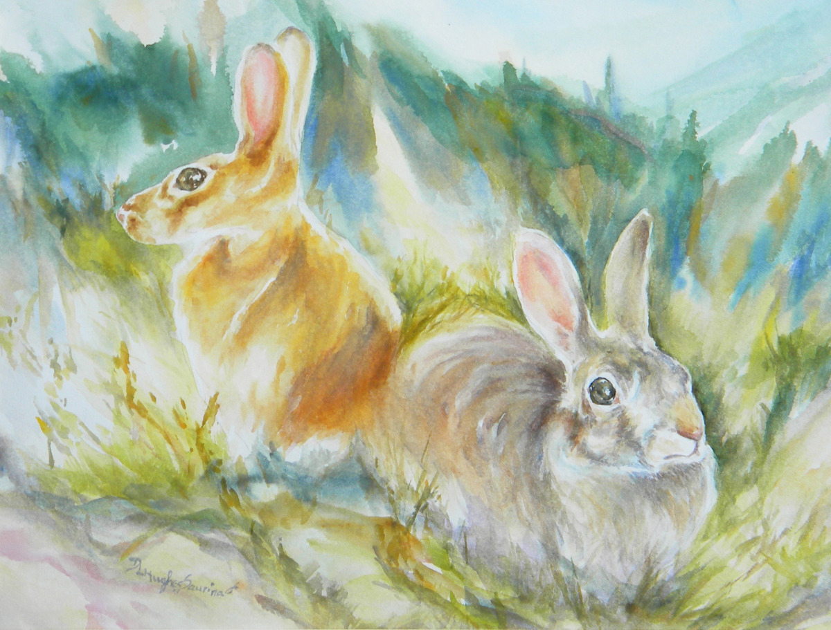 Pair of listening rabbits in a semi abstract mountain meadow (large view)