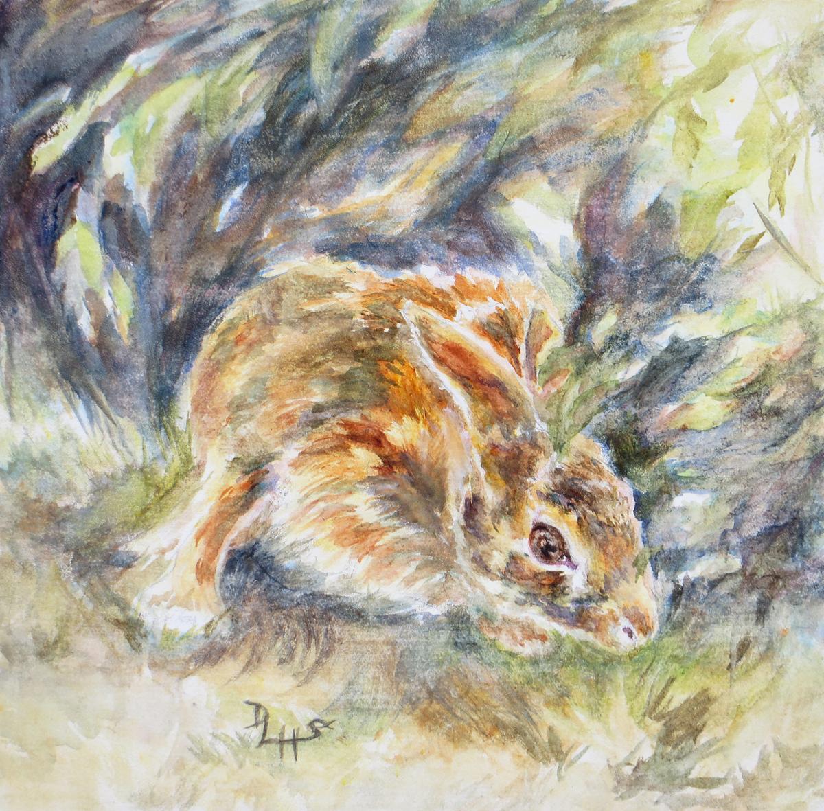 Foraging Rabbit (large view)