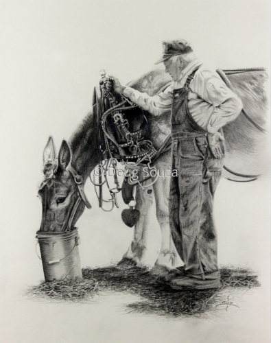 Old Man and His Mule