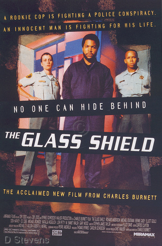 Glass Shield