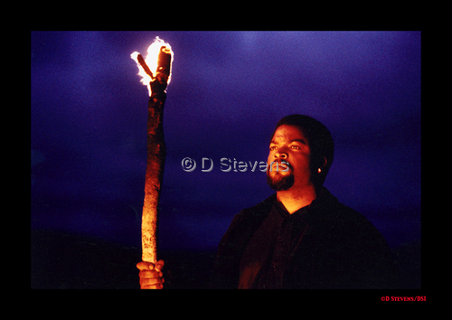 DsVision America - So Africa Ice Cube