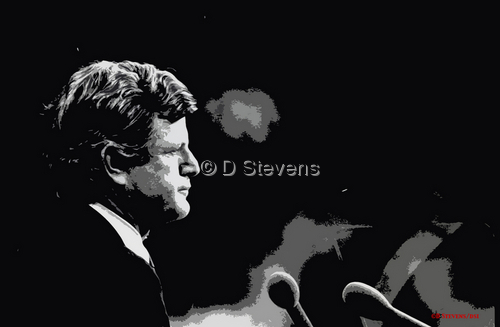 DsVision -NYC Senator Ted Kennedy