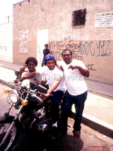 DsVision America: South Central L.A.
