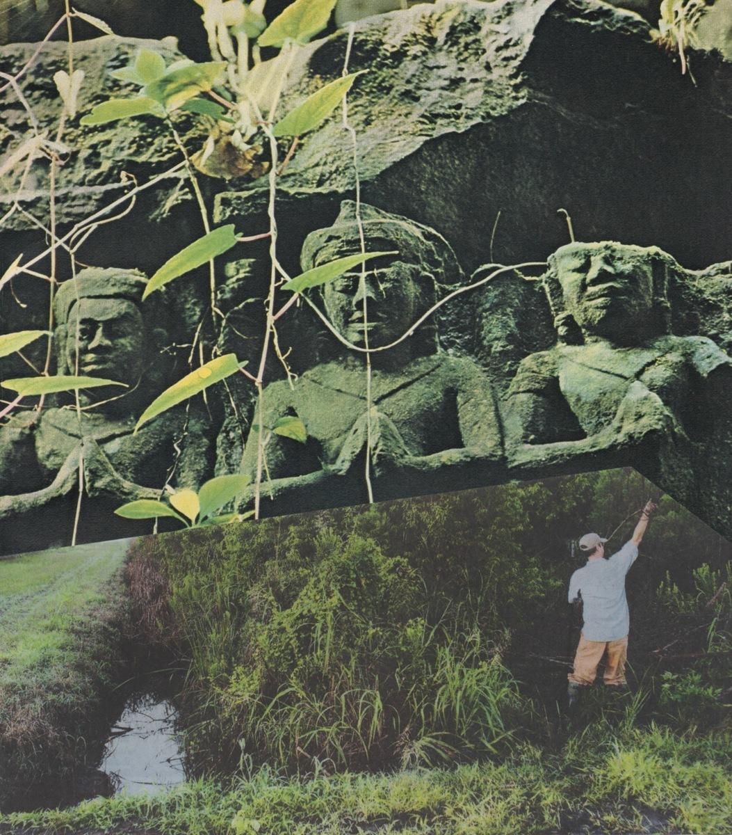 Gardening  (large view)