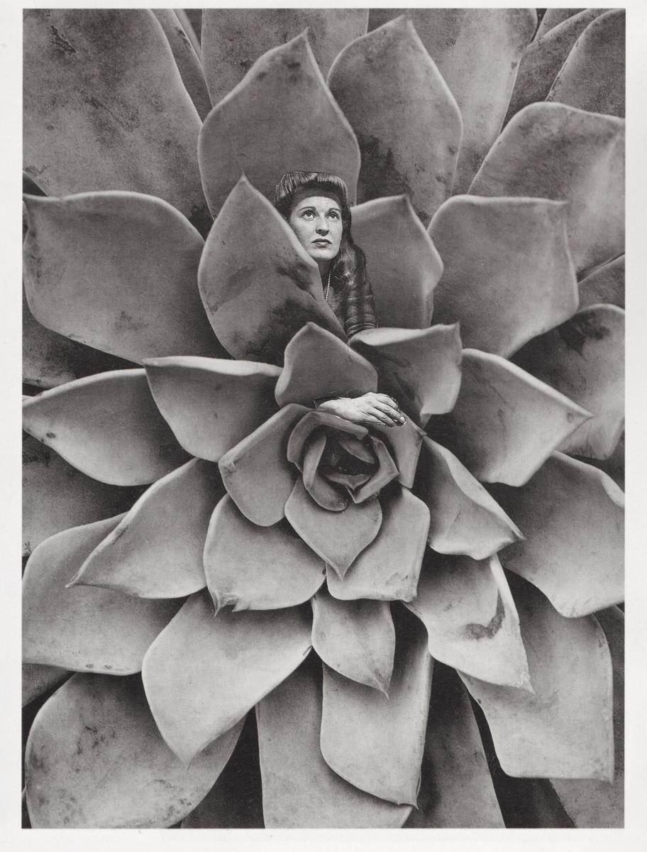 Succulent Woman  (large view)