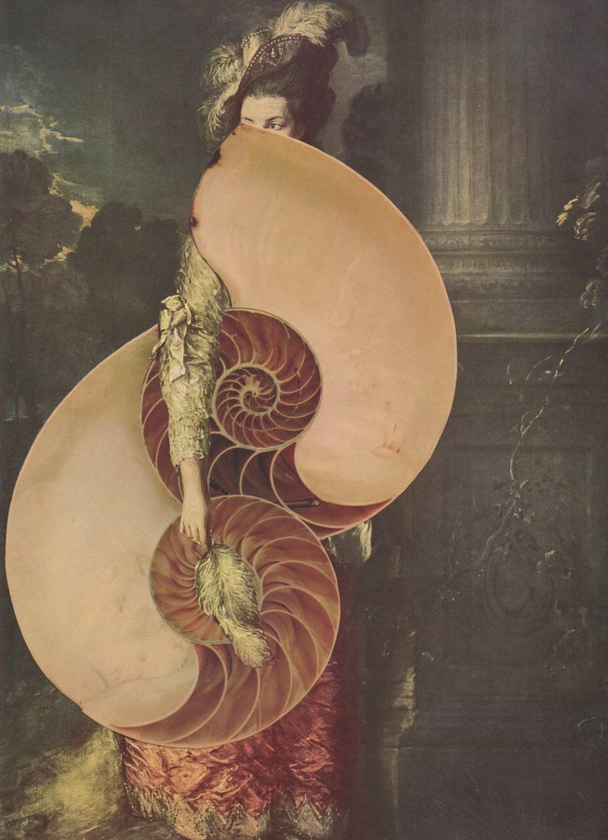 Fibonacci's Folly  (large view)