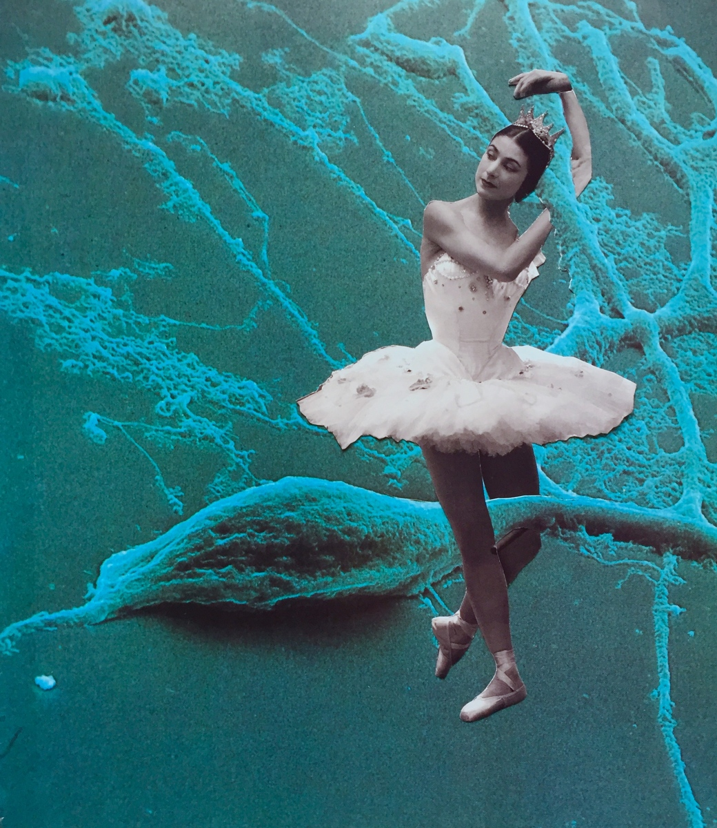 Ballet On The Brain  (large view)