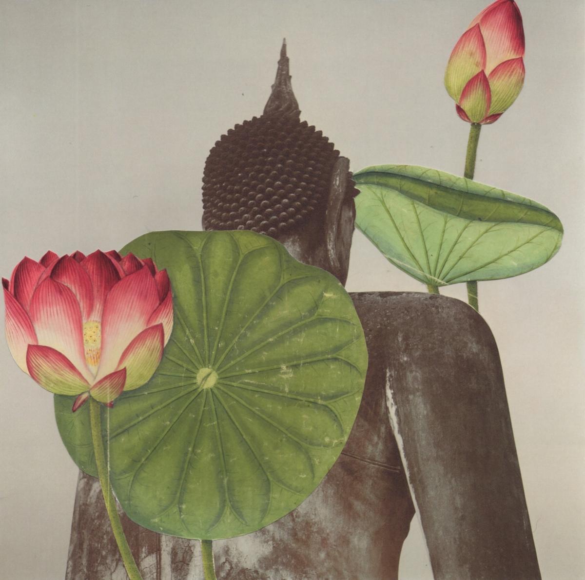Lotus (large view)