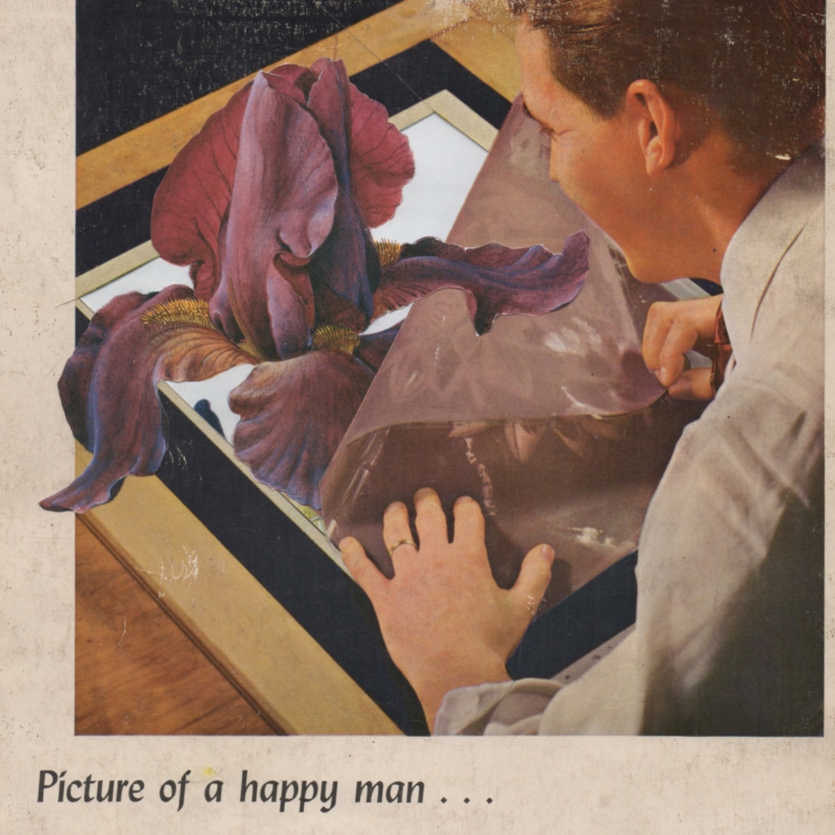 Picture of a Happy Man (large view)