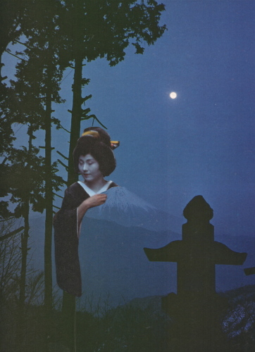 Fuji w/Moon  by Deborah Stevenson
