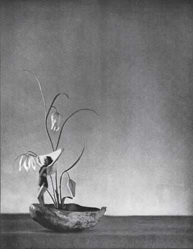 Fanciful Figurehead by Deborah Stevenson