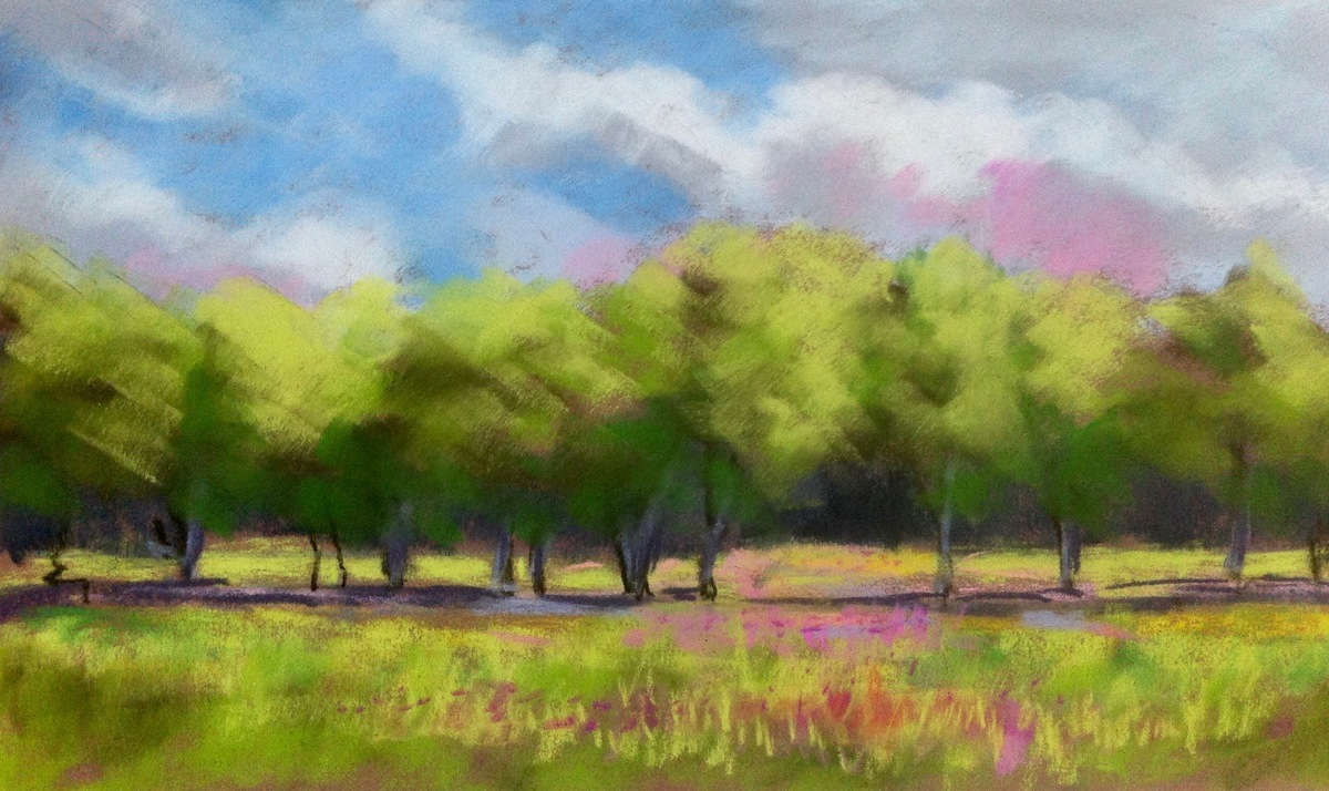 Meadow and Trees (large view)