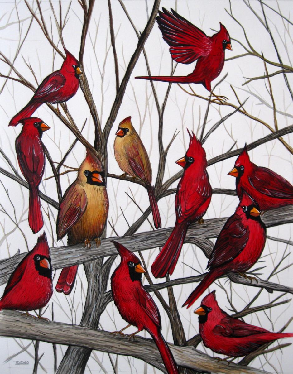 Fall Cardinals (large view)